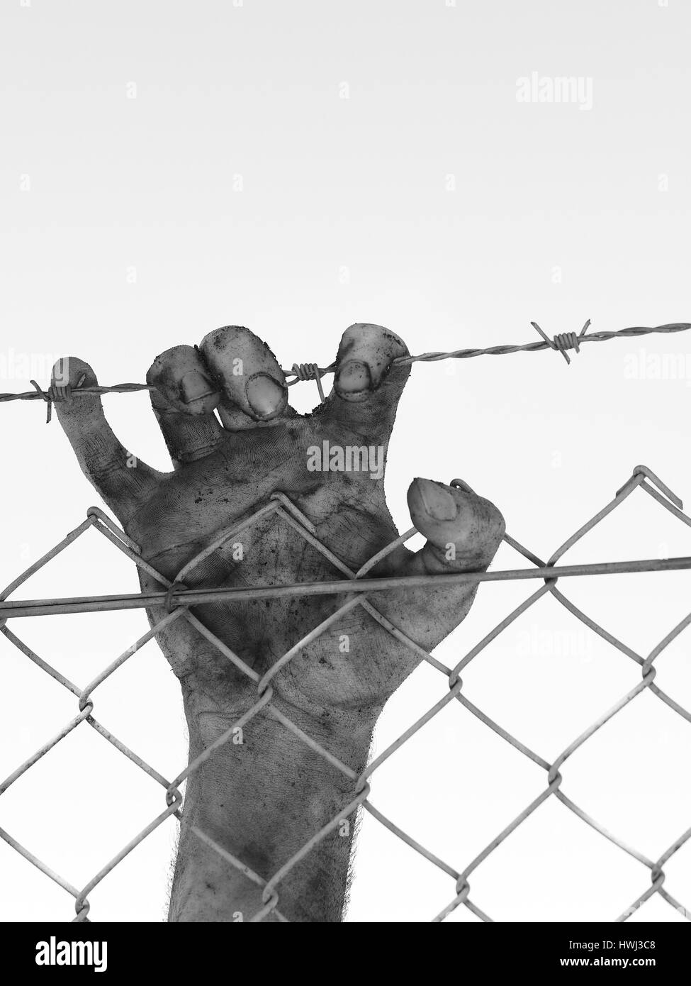 Dirty hand clinging to a steel barb wire fence, black and white, Australia 2016 - Stock Image