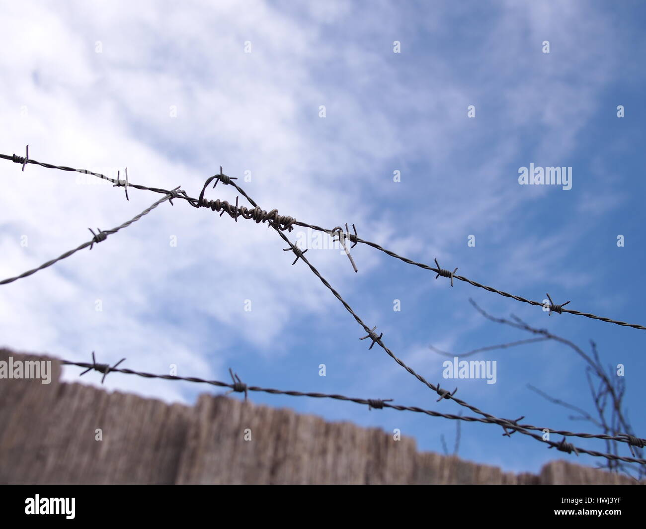 Steel barb wire on a fence under blue sky with clouds, Australia 2016 - Stock Image