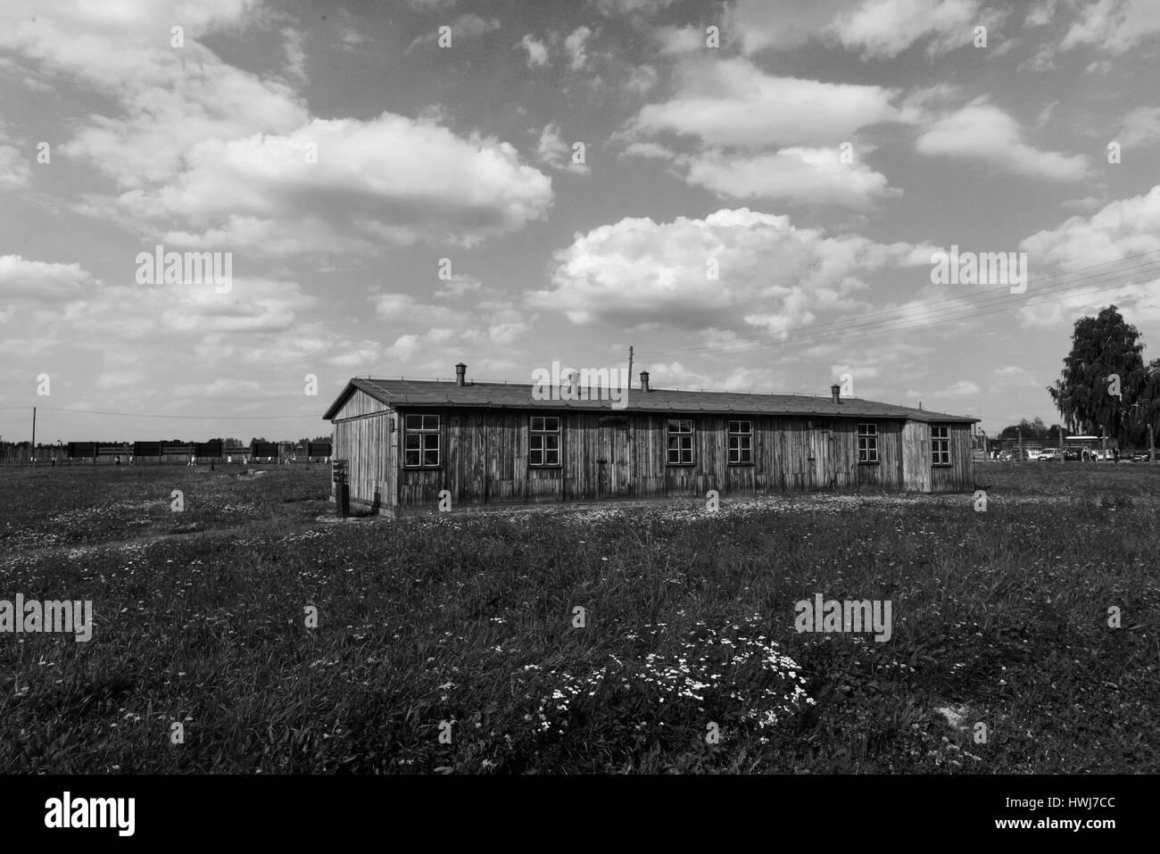 Baracke, Konzentrationslager, Auschwitz-Birkenau, Auschwitz, Polen - Stock Image