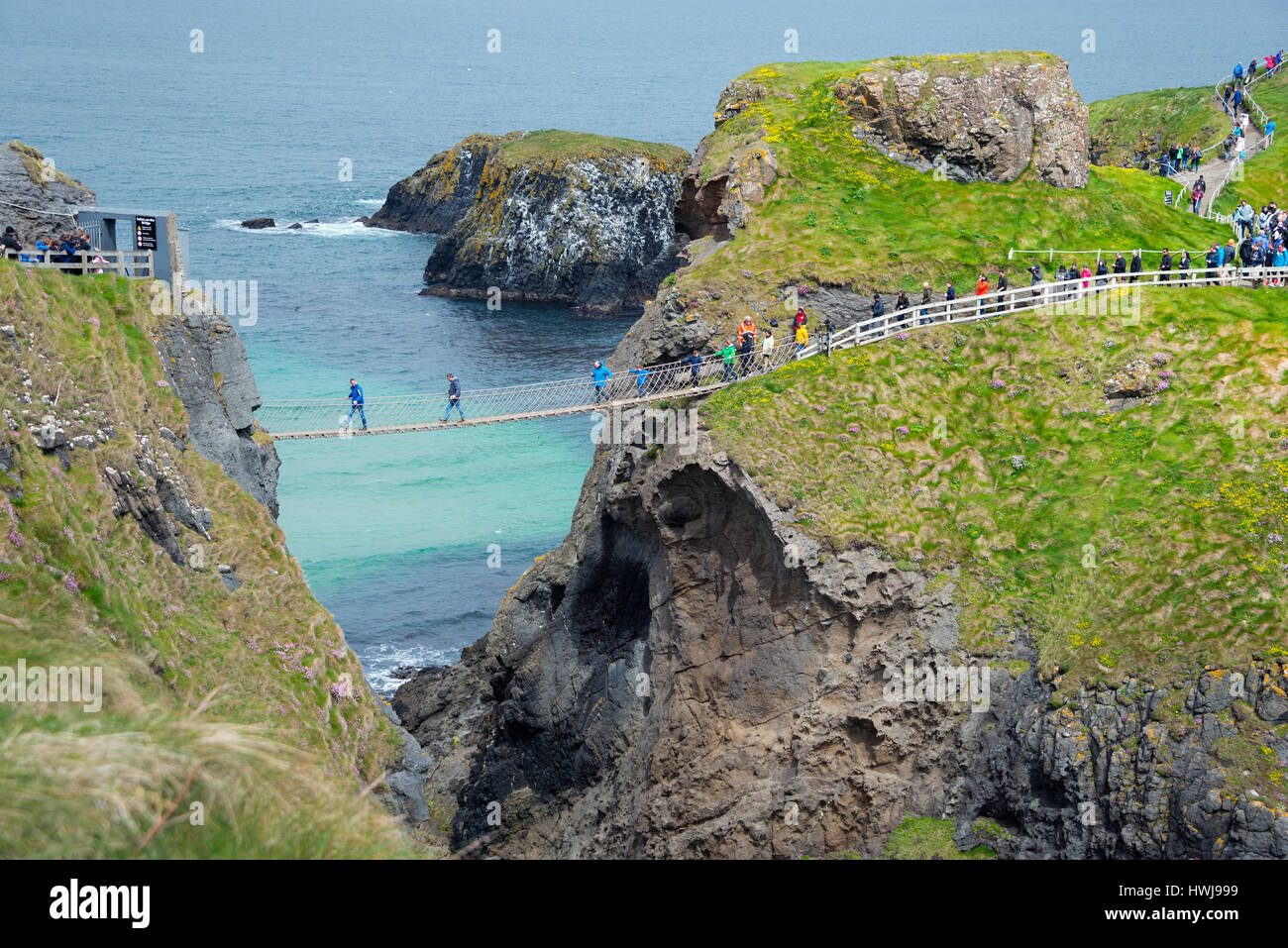 Hanging bridge, Carrick-a-Rede Rope Bridge, Island Carrick-a-Rede, County Antrim, Northern Ireland, Great Britain - Stock Image