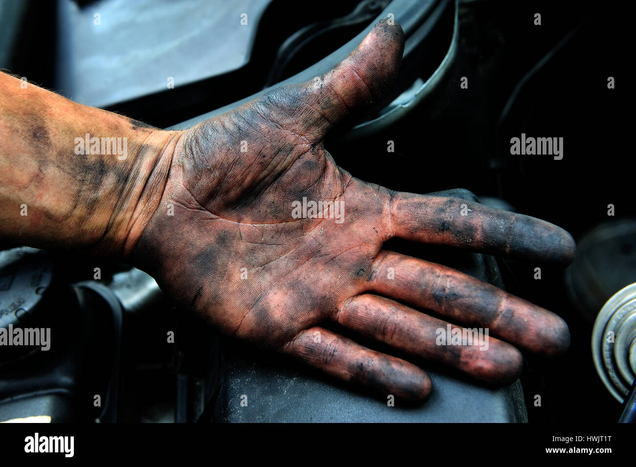 a person, a working, arm, black works, craftemployment, illegally employment, illicit workprofessional life, professionally, Stock Photo