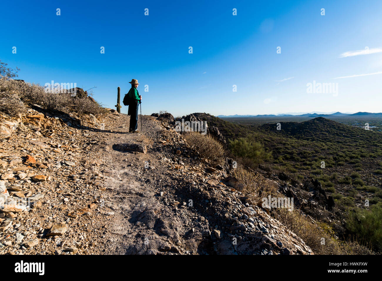 A senior woman hiker hiking along a trail in the Cave Creek recreational Area north of Phoenix Arizona USA - Stock Image