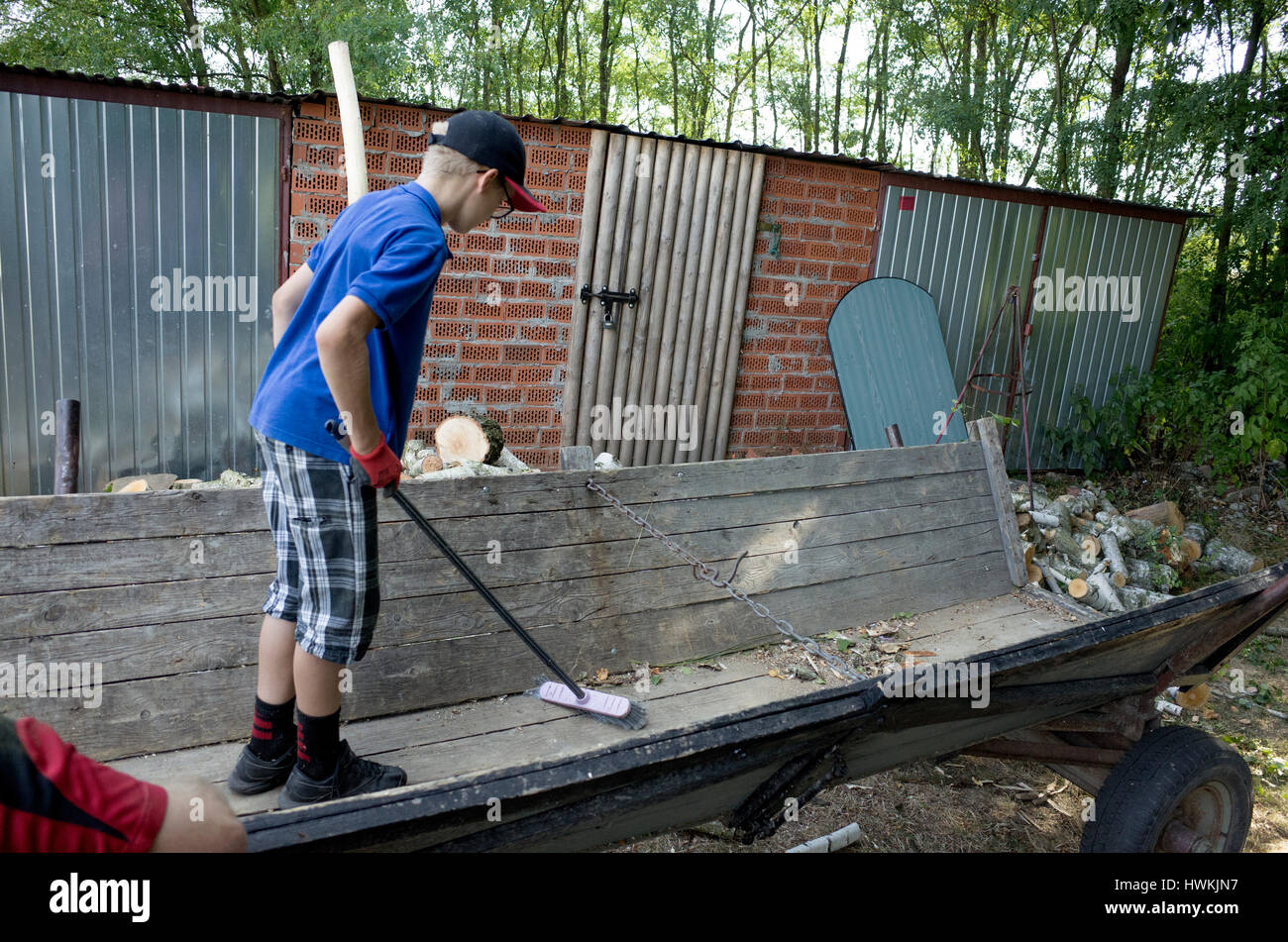 Boy sweeping out wagon that was filled with wood as a family chore or job age 12. Zawady Central Poland Europe - Stock Image