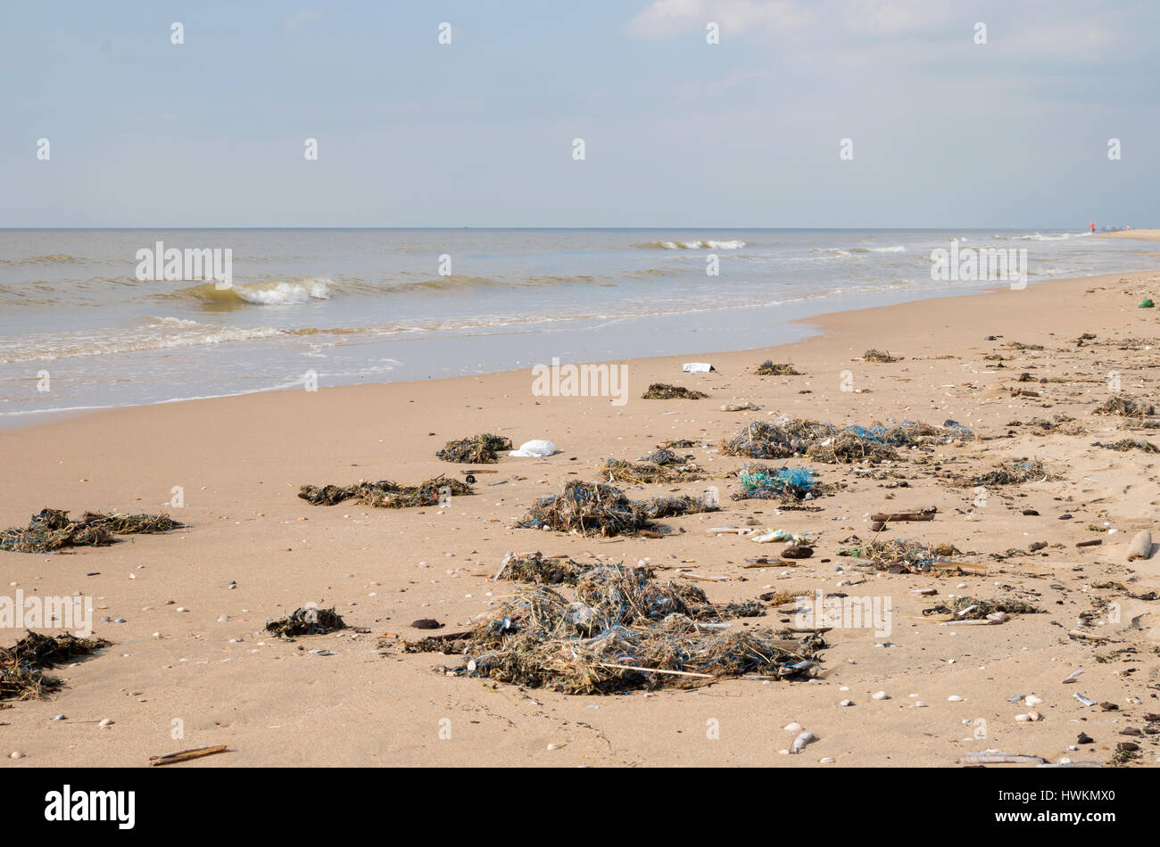 pollution at Dutch North Sea coast - Stock Image