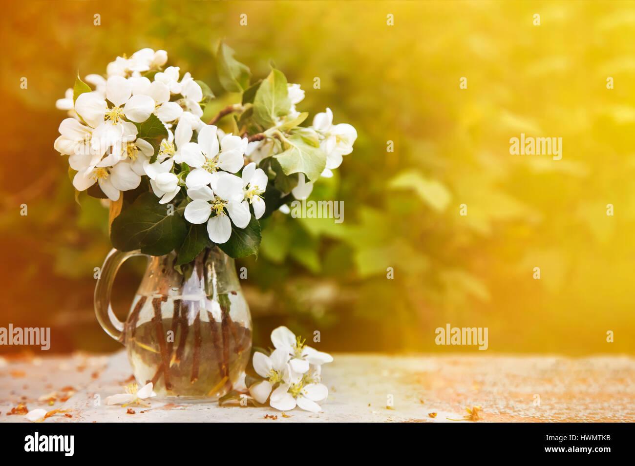 Cherry blossom bouquet - Stock Image