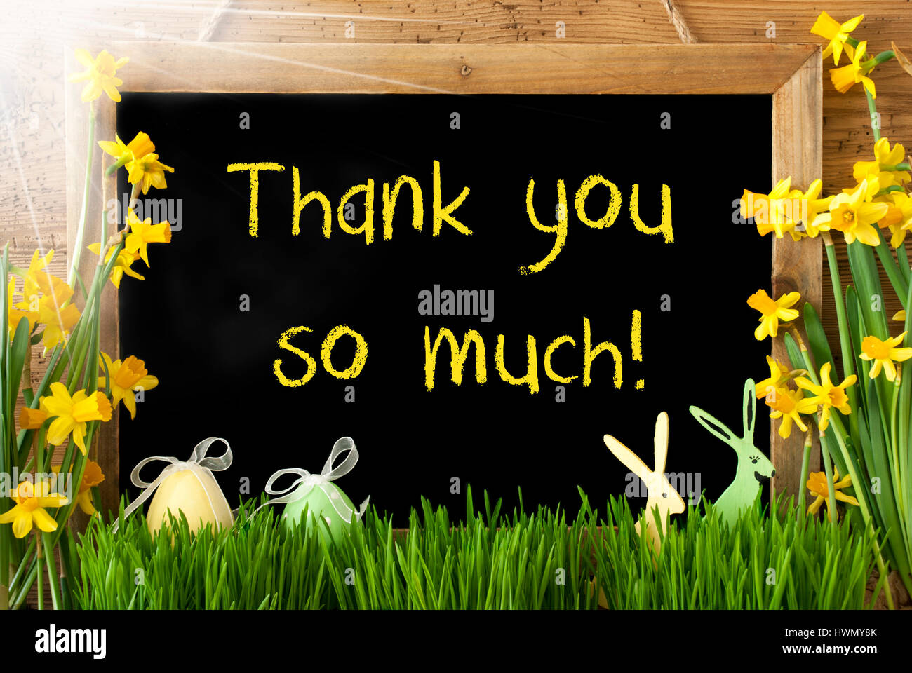 Sunny Narcissus, Easter Egg, Bunny, Text Thank You So Much ...