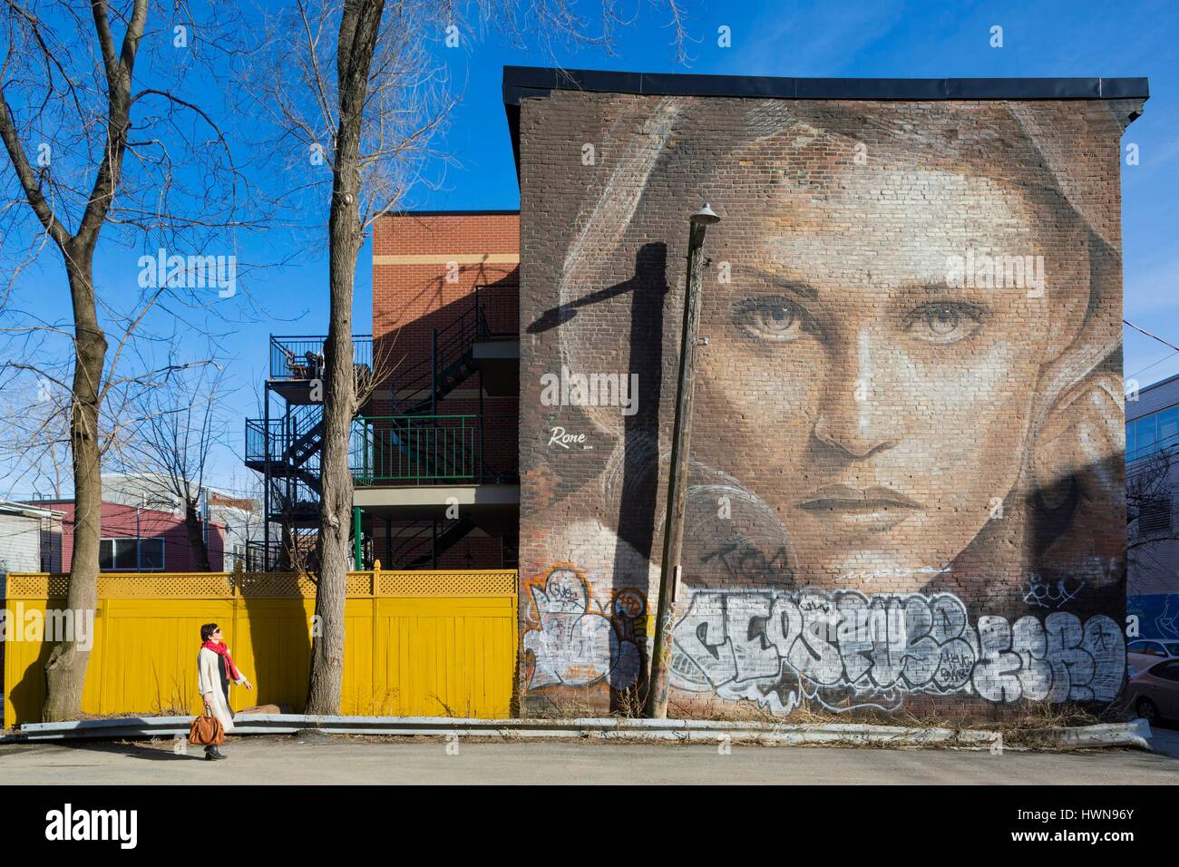 Canada, Province of Quebec, Montreal Celestine by RONE for the Mural 2014 festival The Australian artist braved Stock Photo