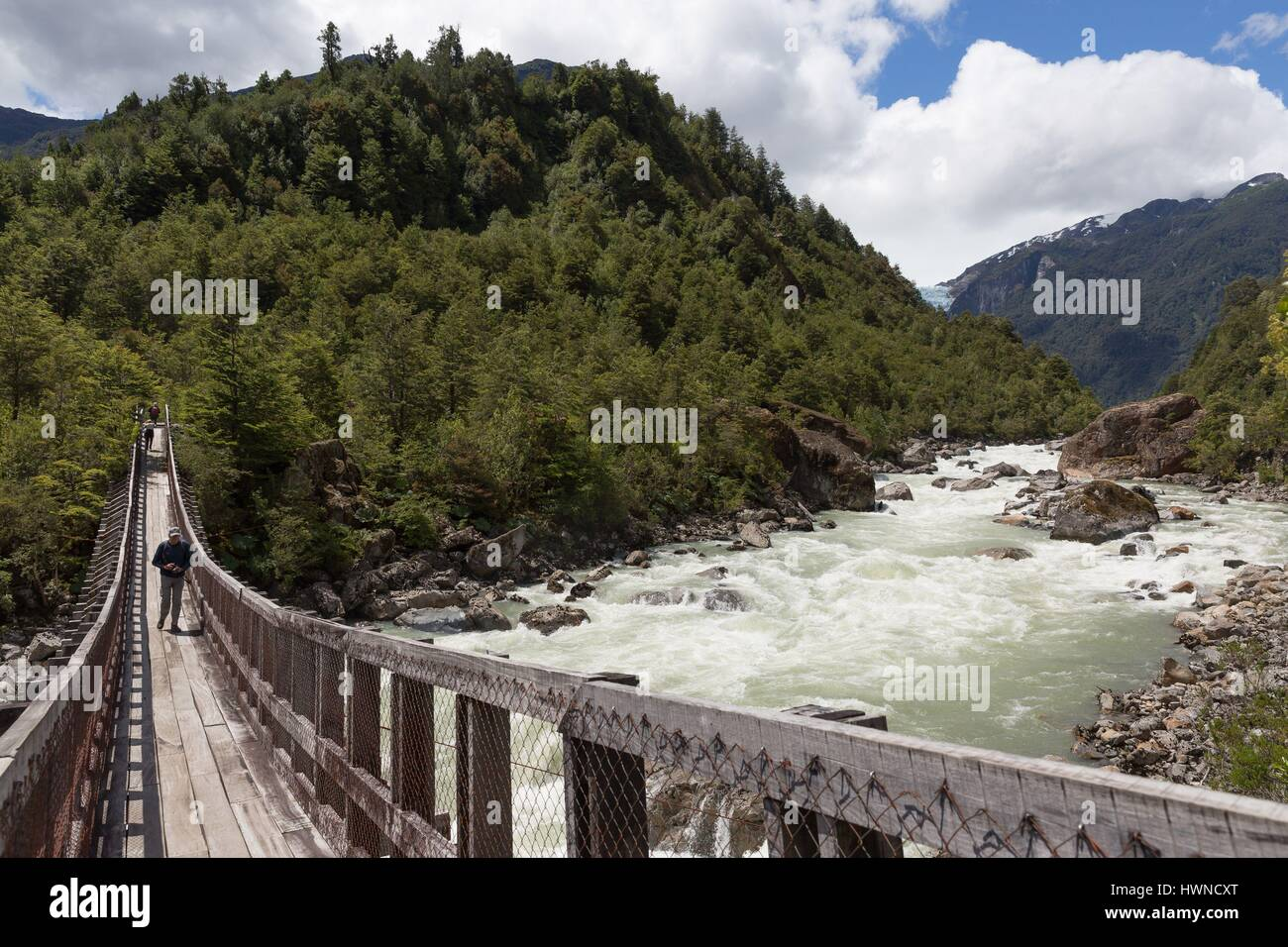 Chile, Patagonia, Aysen region, Queulat National Park, rio Ventisquero - Stock Image