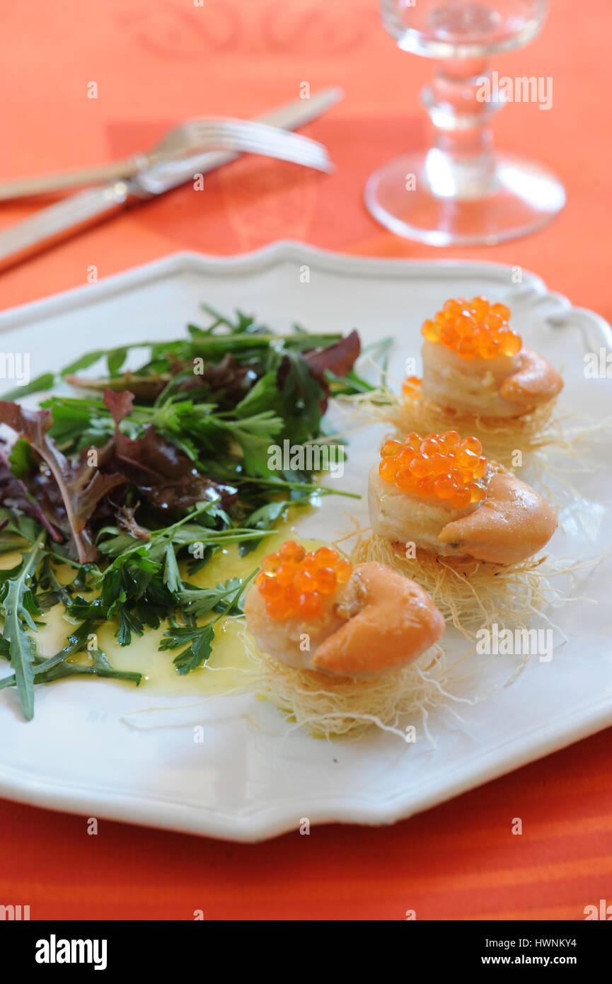 Nids de Saint-Jacques aux oeufs de saumon - Stock Image
