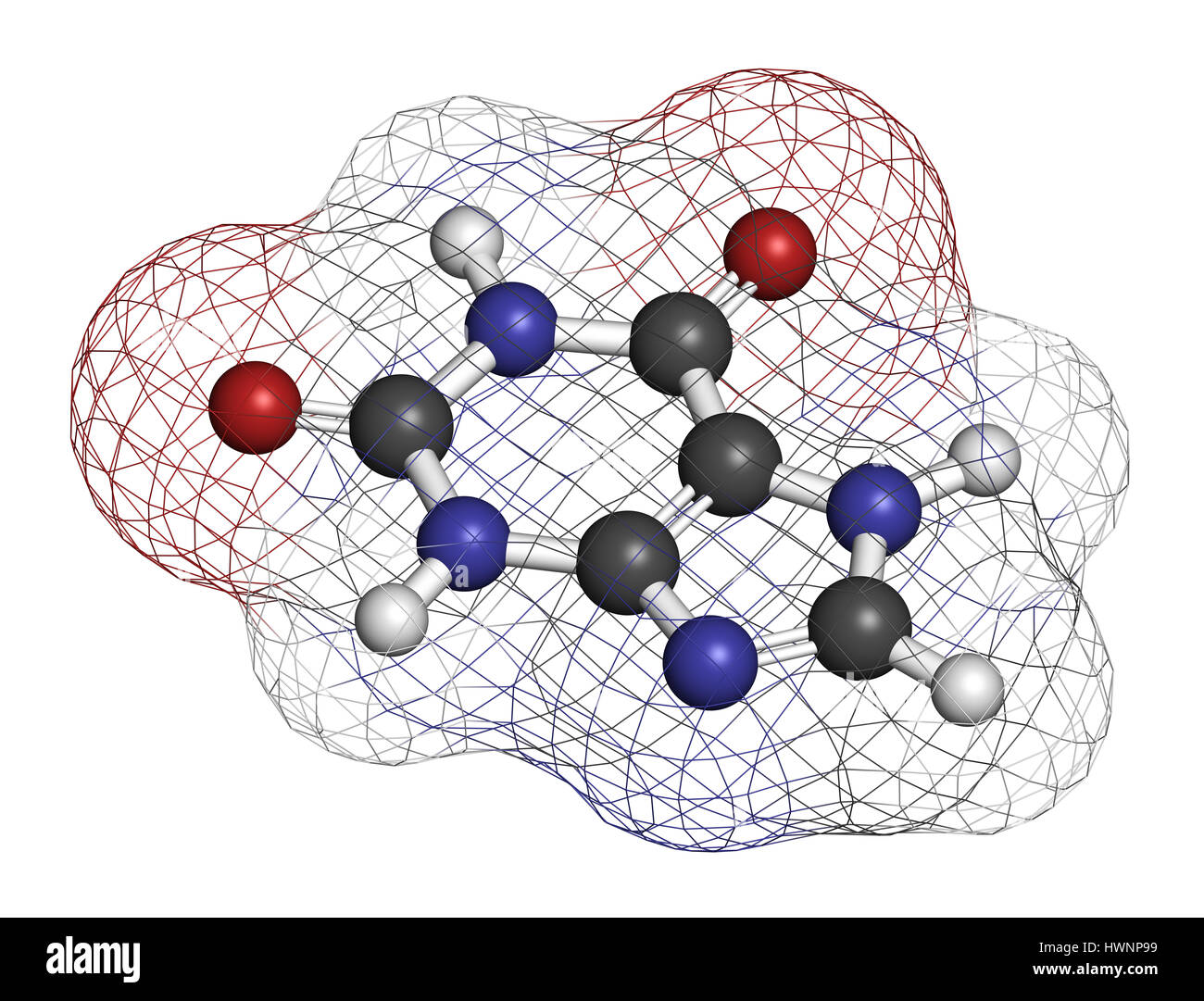 Xanthine purine base molecule. 3D rendering. Atoms are represented as spheres with conventional color coding: hydrogen - Stock Image