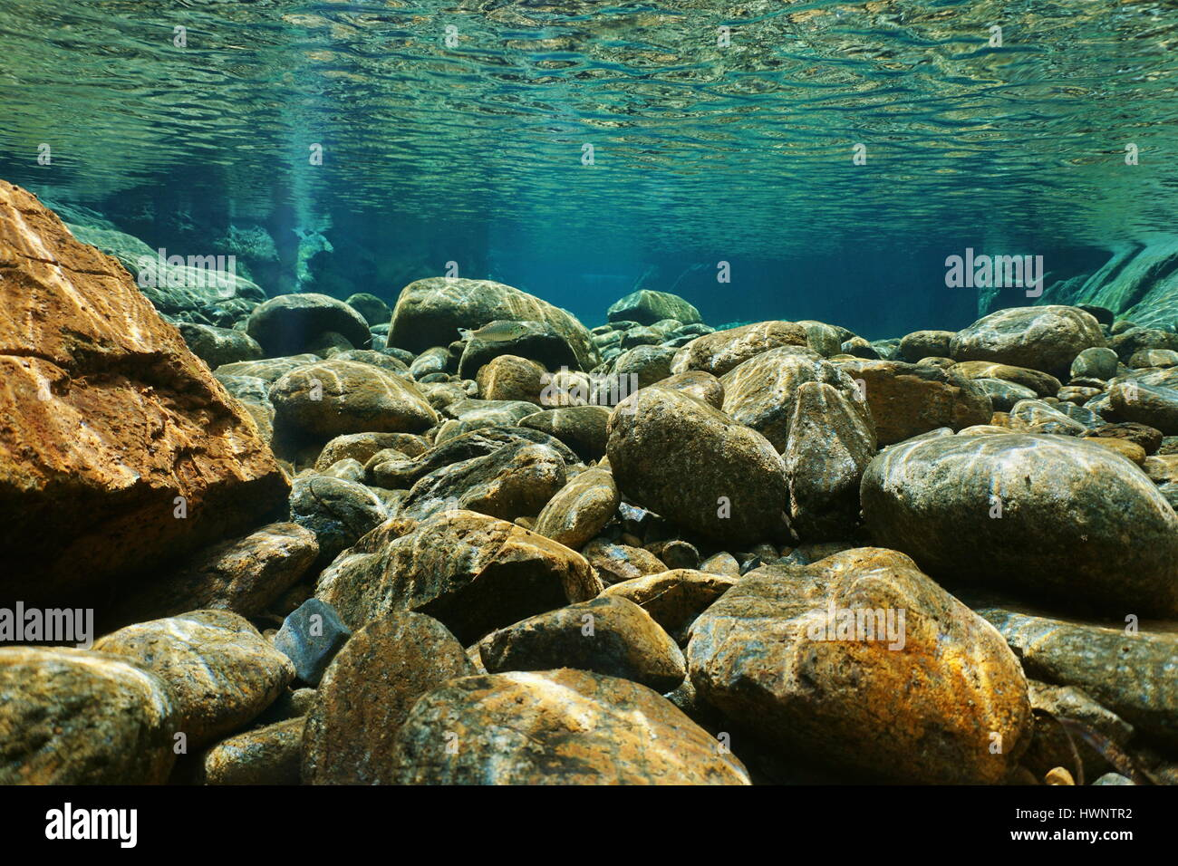 River underwater rocks on a shallow riverbed with clear water, Dumbea, Grande Terre island, New Caledonia - Stock Image
