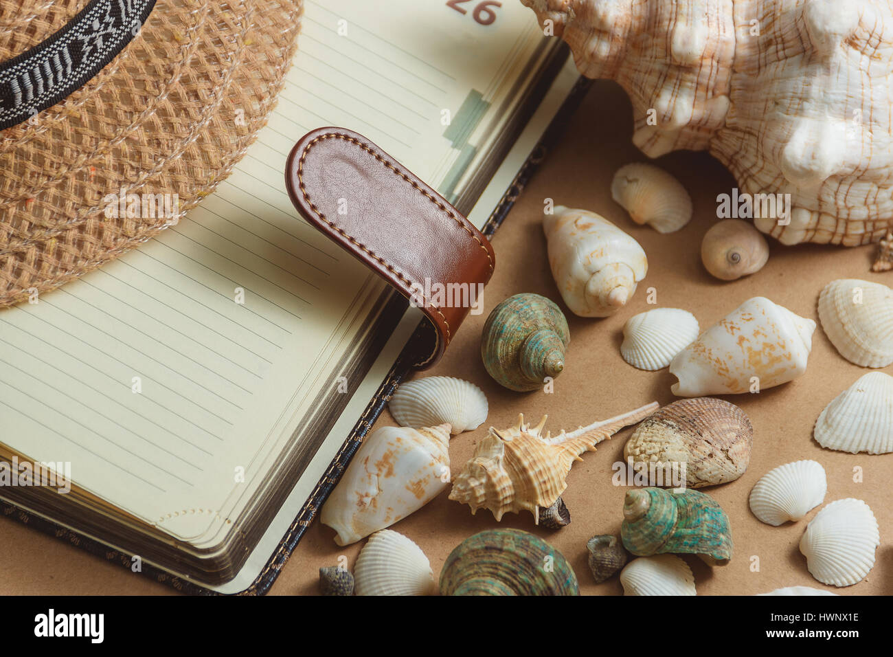seashells on light background with notebook. flat view. travel concept - Stock Image
