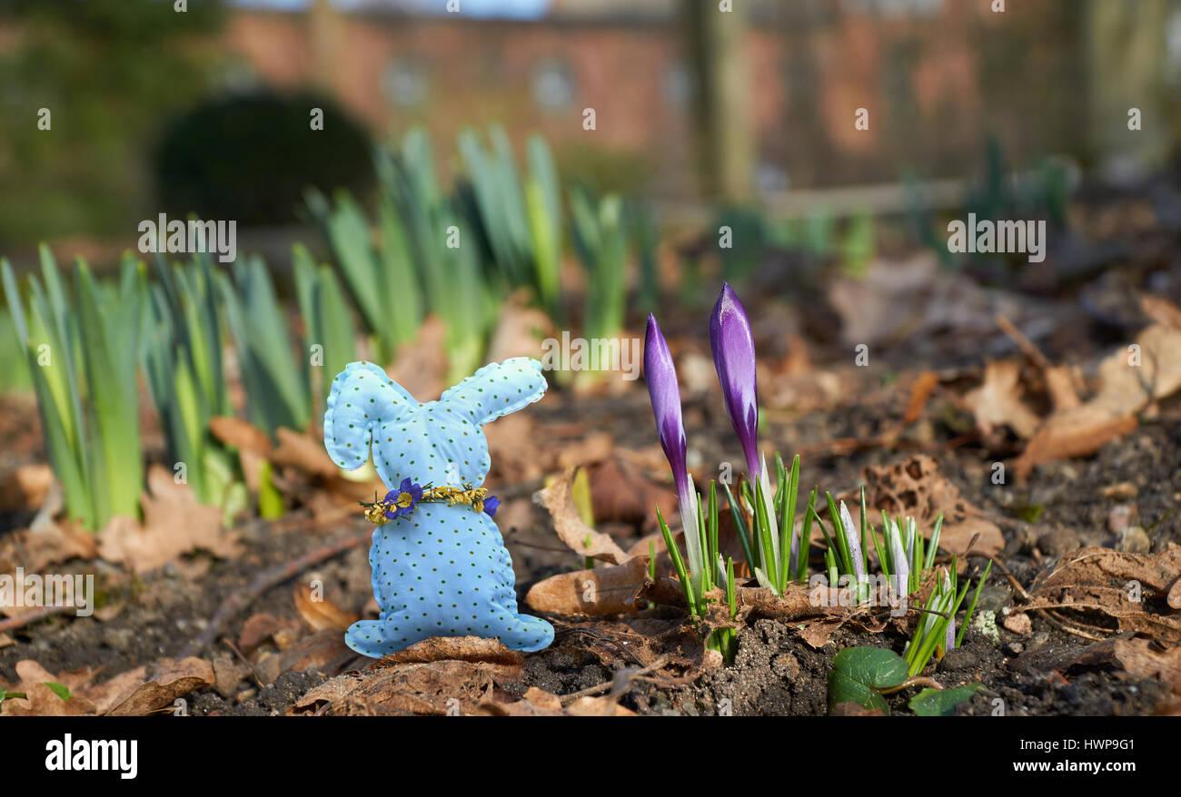 Handmade Rabbit Between Spring Flowers Stock Photo 136329425 Alamy