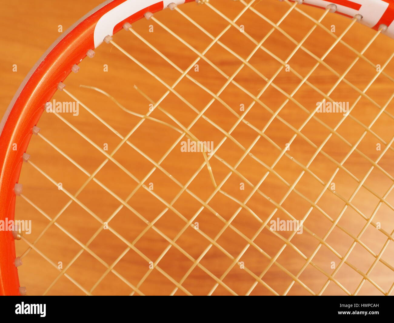 String break of a mains synthetic monofilament polyester Tennis string caused by normal wear from topspin hits near - Stock Image