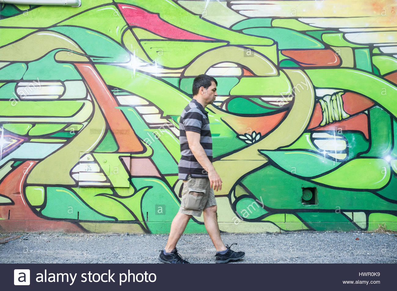 Adelaide, Australia. 4th Apr, 2017. Colourful art murals by various urban artists are showcased as part of the Adelaide - Stock Image