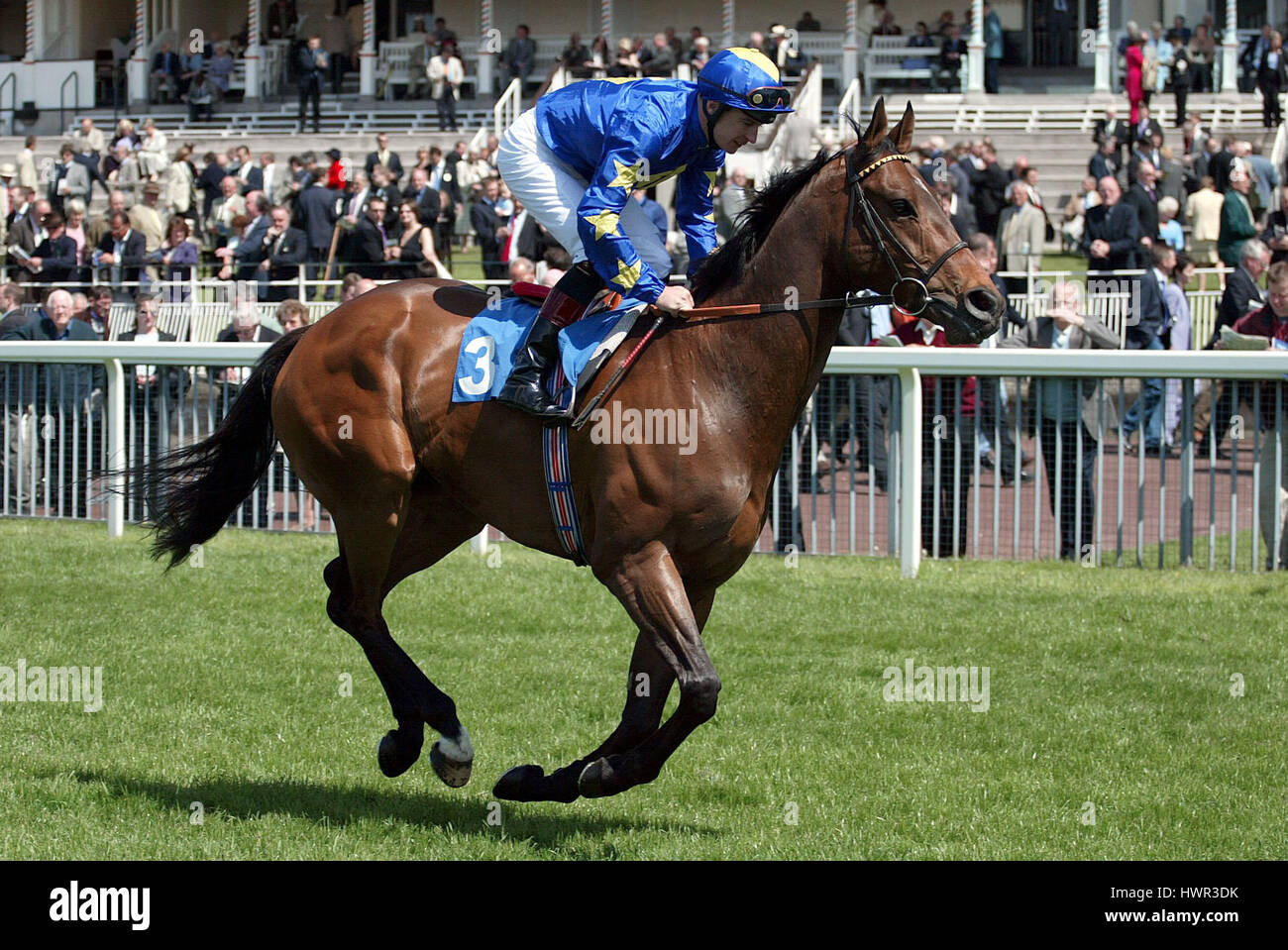 BORDER SUBJECT RIDDEN BY S.DROWNE YORK RACECOURSE YORK ENGLAND 14 May 2003 - Stock Image
