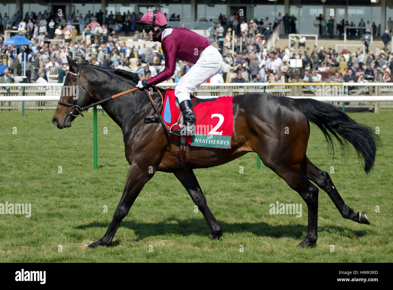 OLDEN TIMES RIDDEN BY K.FALLON NEWMARKET ENGLAND 16 April 2003 - Stock Image