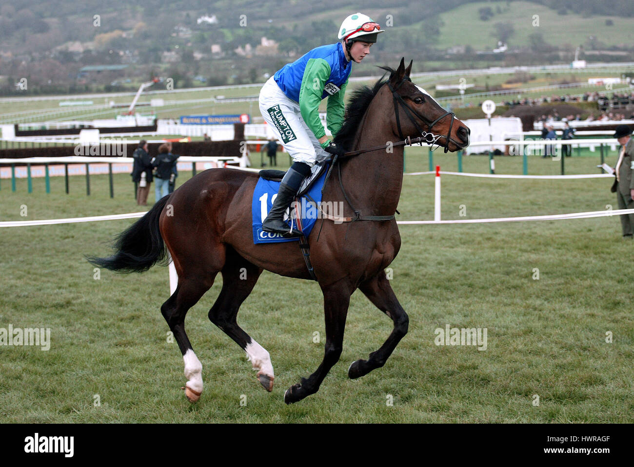 CONTRABAND RIDDEN BY JAMES DAVIS CHELTENHAM RACECOURSE CHELTENHAM ENGLAND 17 March 2004 - Stock Image
