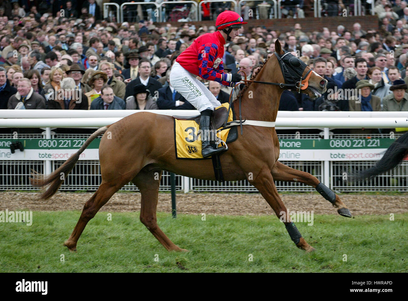 ANALOGY RIDDEN BY N.FEHILY CHELTENHAM RACECOURSE CHELTENHAM ENGLAND 18 March 2004 - Stock Image