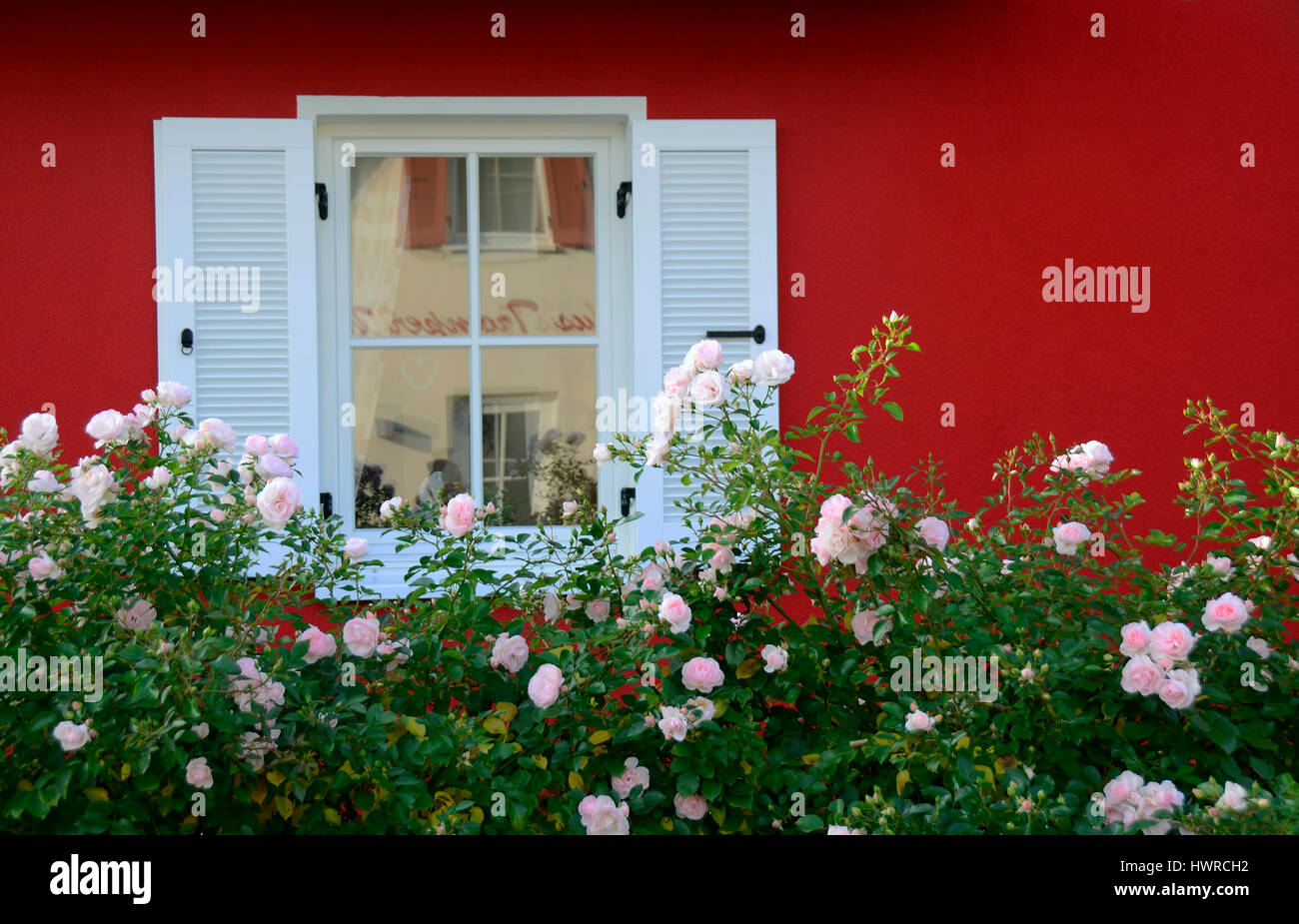 Window shutters of a holiday house, Isle of Ruegen, Germany - Stock Image