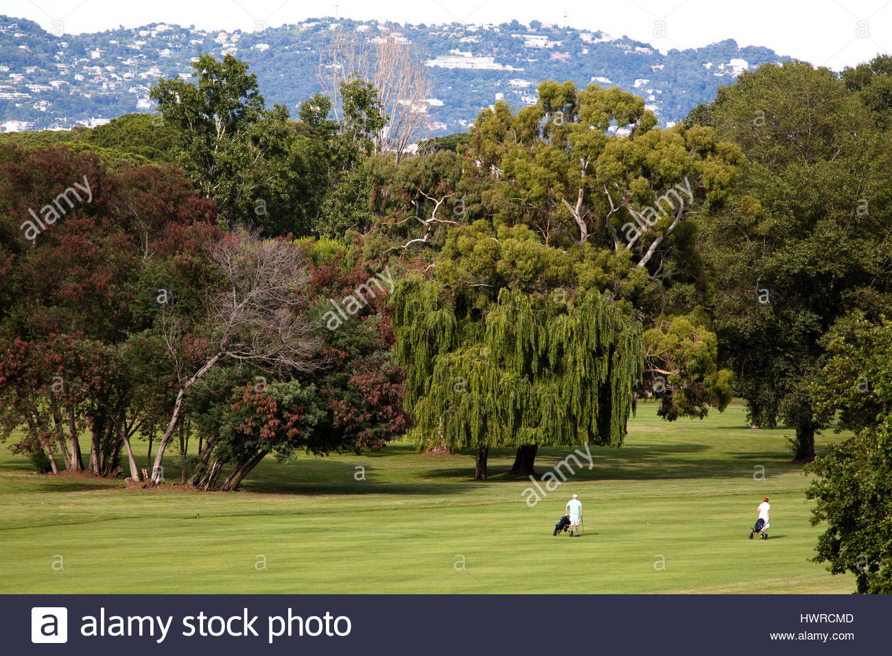 Two golfers pulling trolleys behind them after playing their shots on a golf course outside Cannes in the south - Stock Image
