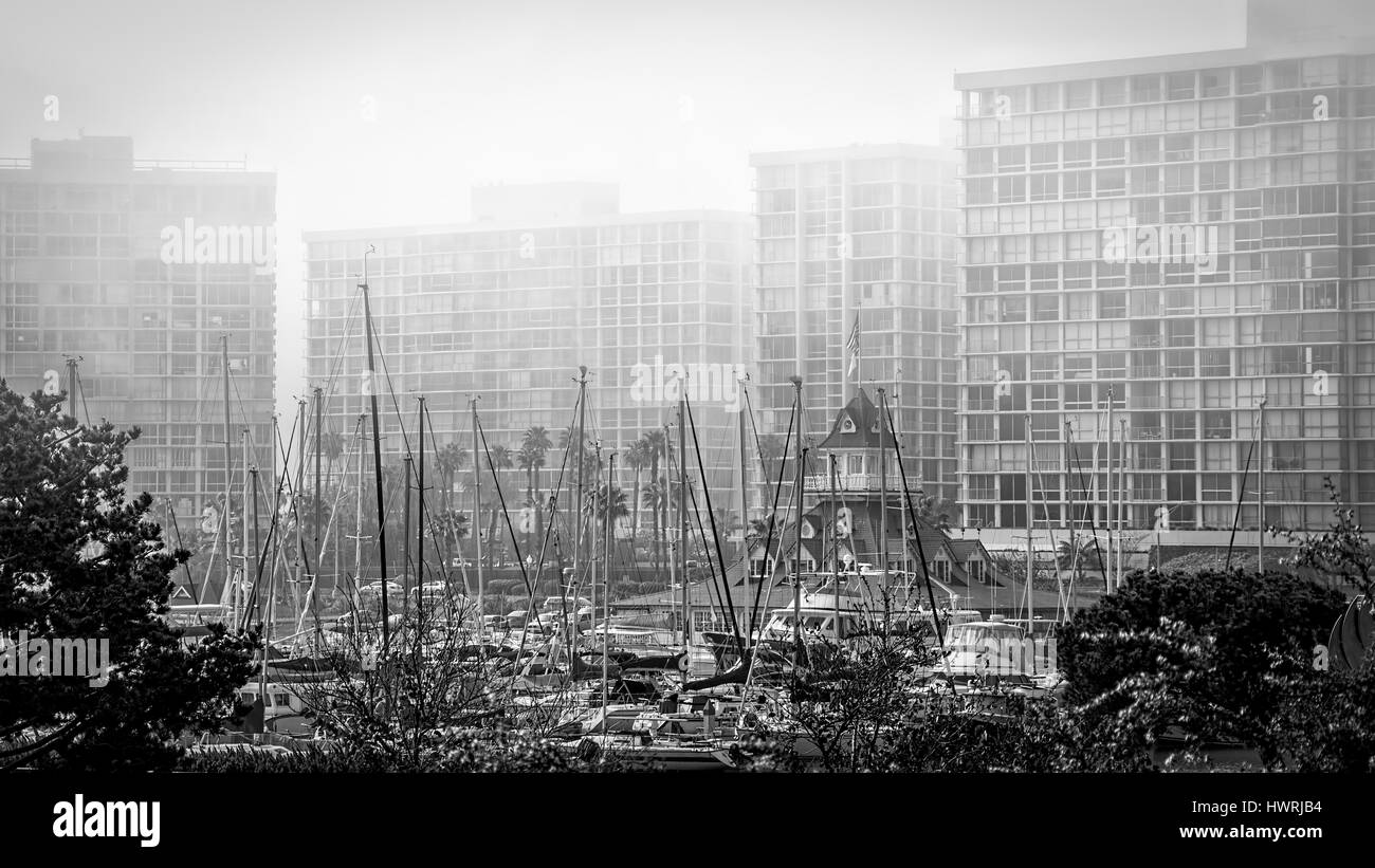 Masts in the fog at a southern marina. Stock Photo
