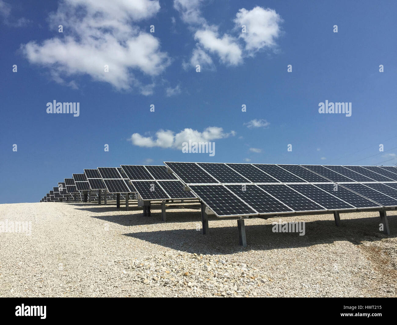 Solar panels on field against blue sky during sunny day - Stock Image