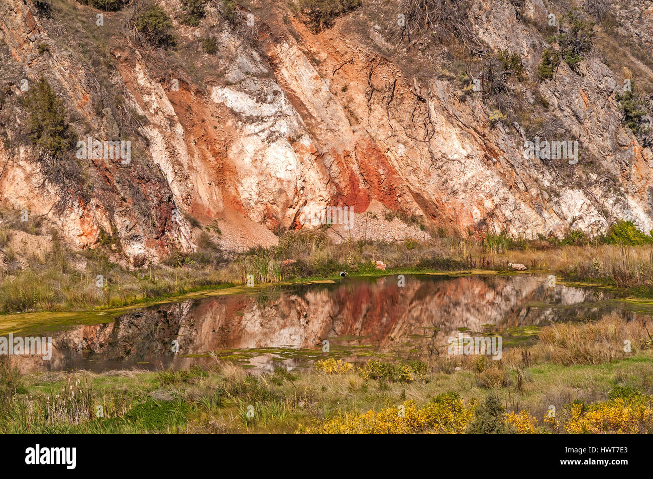 Contrasts abound in this photo of a mountain reflected in a pond. - Stock Image