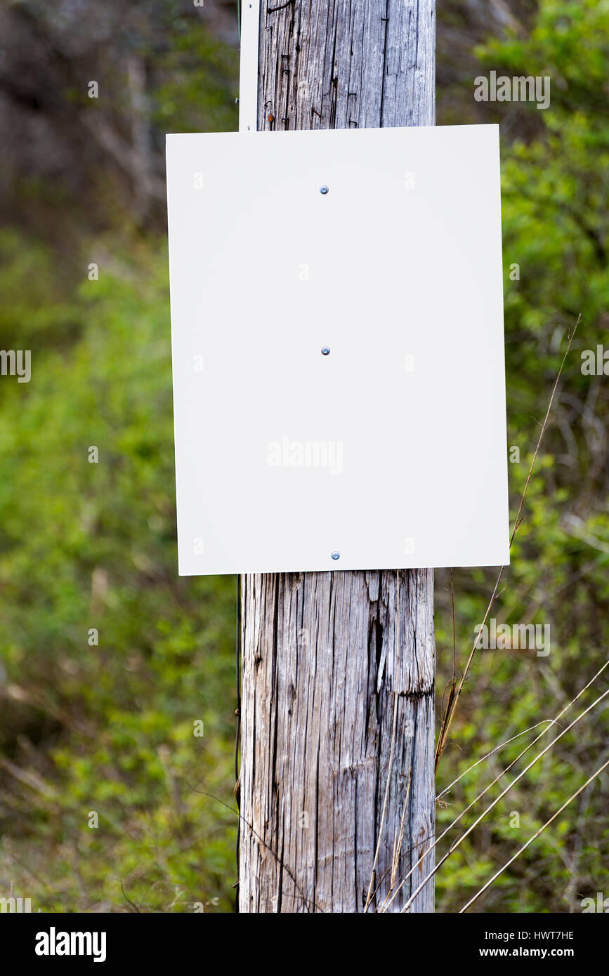 A blank sign on a telephone pole awaits your announcement, ad or message. - Stock Image