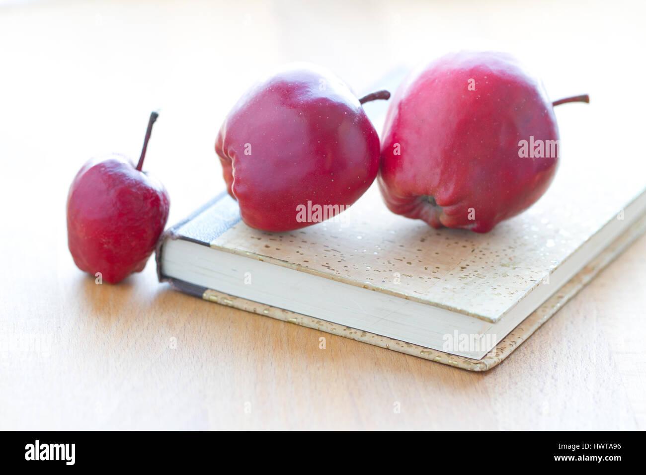 Tagebuch mit drei kleinen, süßen Äpferln Stock Photo