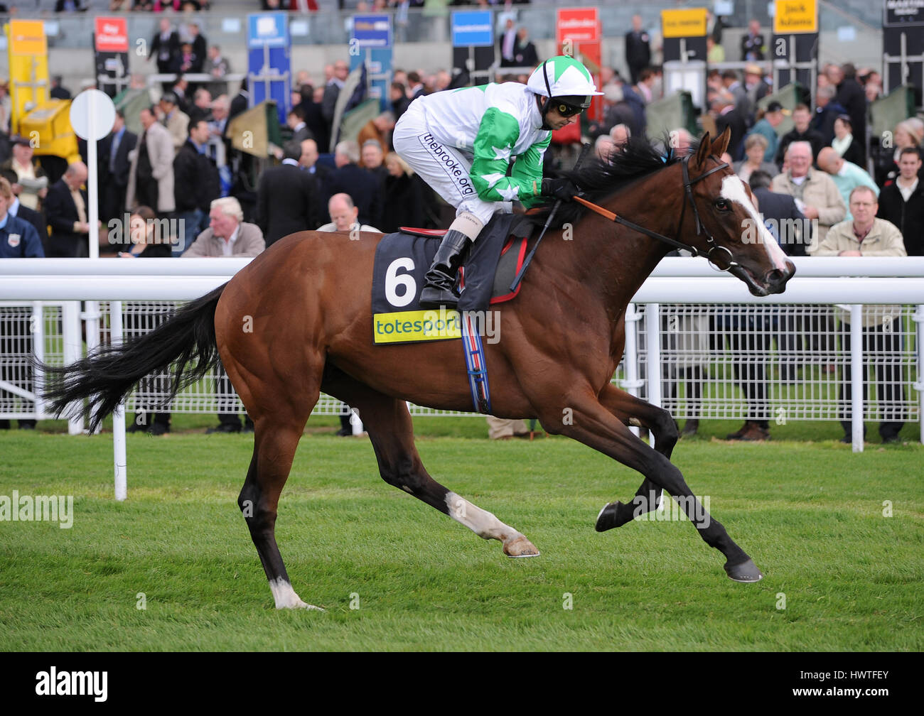 MONITOR CLOSELY RIDDEN BY ALAN MUNRO YORK RACECOURSE YORK ENGLAND 14 May 2009 - Stock Image