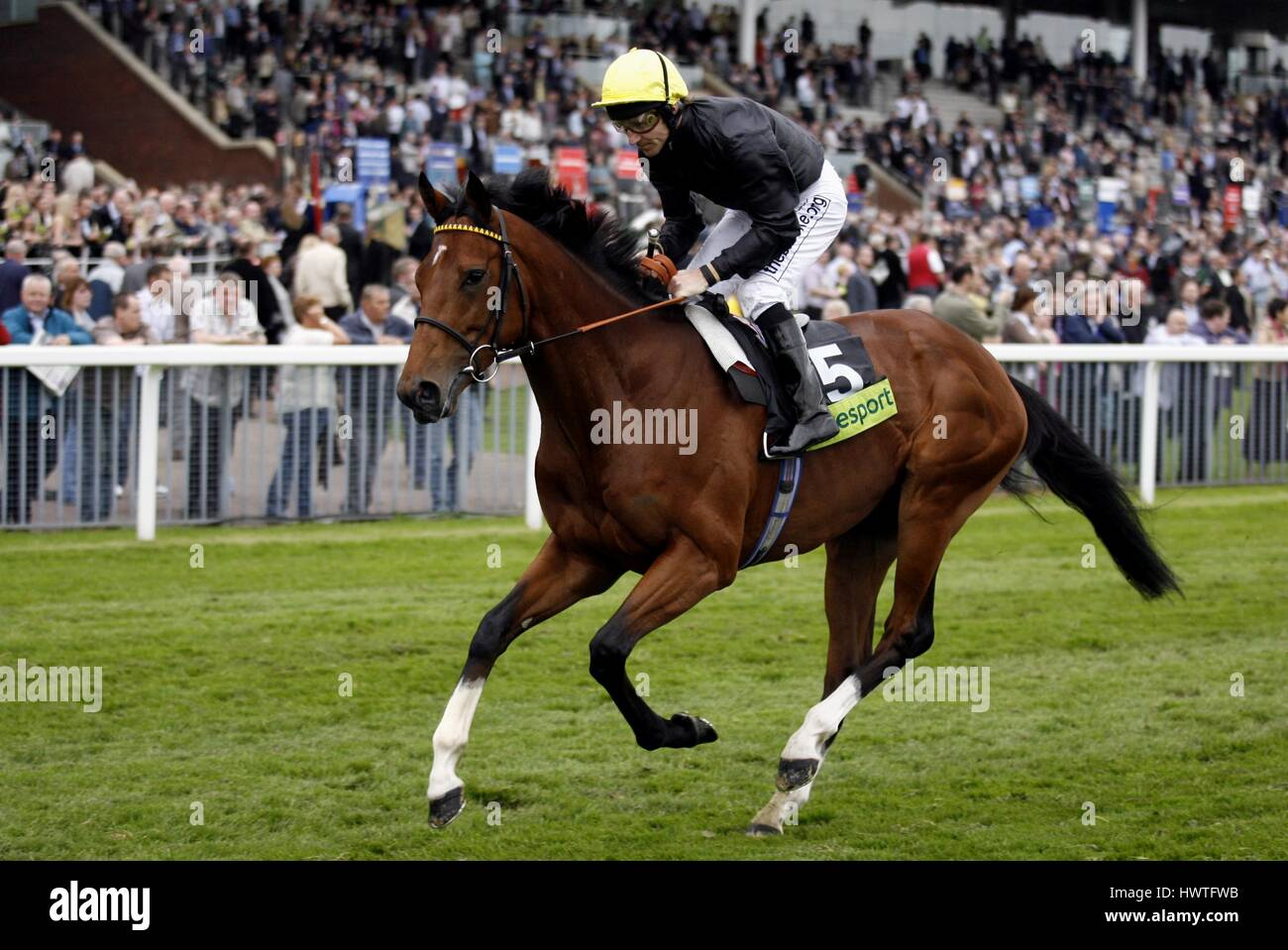PROPONENT RIDDEN BY STEVE DROWNE THE KNAVESMIRE YORK RACECORSE ENGLAND 17 May 2007 - Stock Image