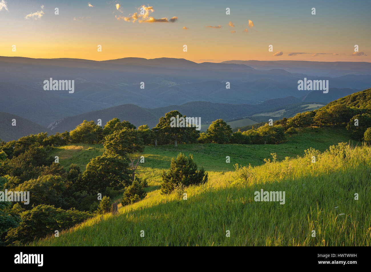 The sun sets across the North Fork Valley and paints the high meadow of Nelson Sods in luxurious greens. - Stock Image