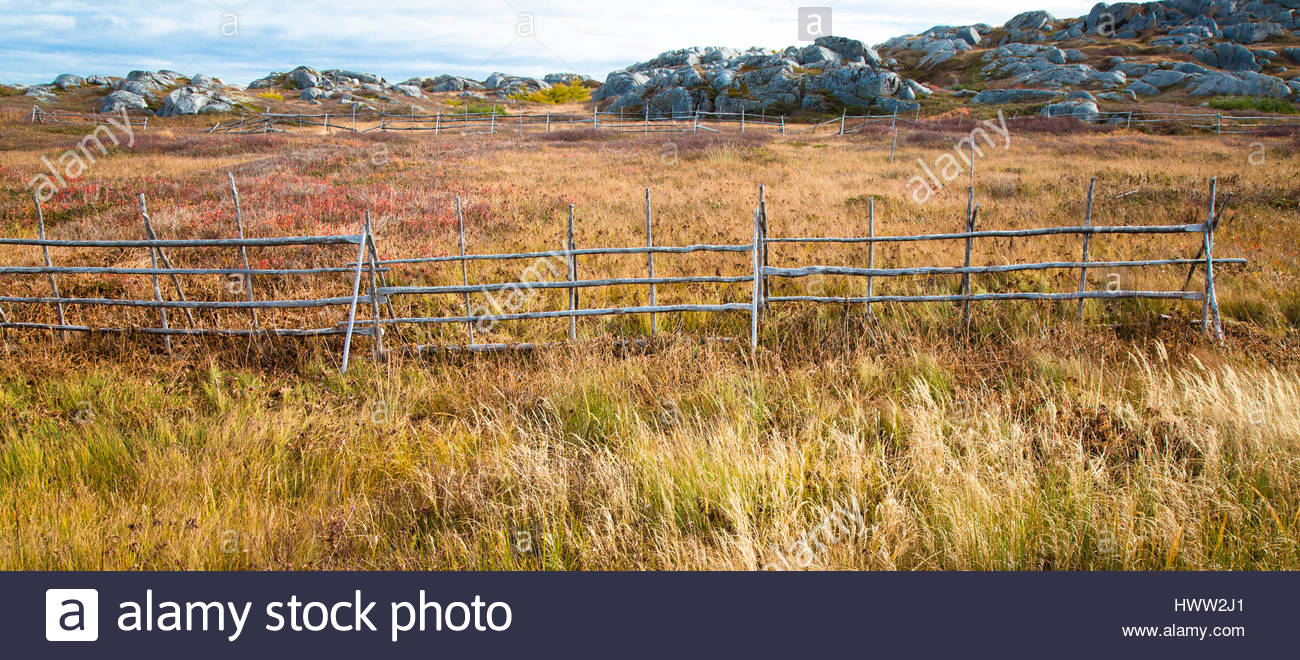 A wooden fence that is an effective barrier to keep animals out of gardens. - Stock Image