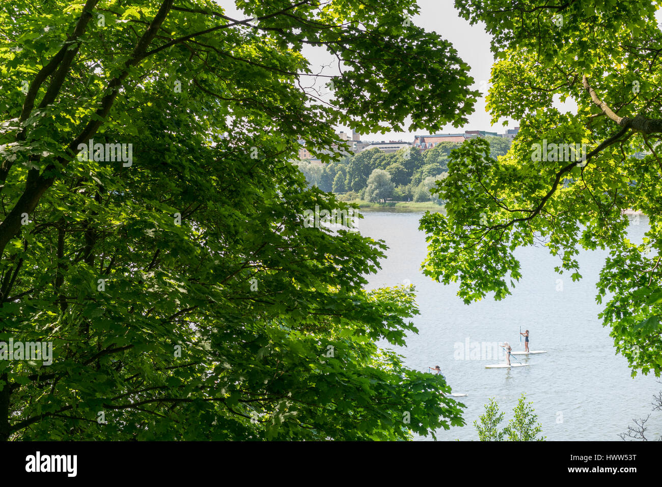 PEOPLE ON STAND UP PADDEL BOARDS ON A LAKE IN HELSINKI SURROUNDED BY TREES Stock Photo