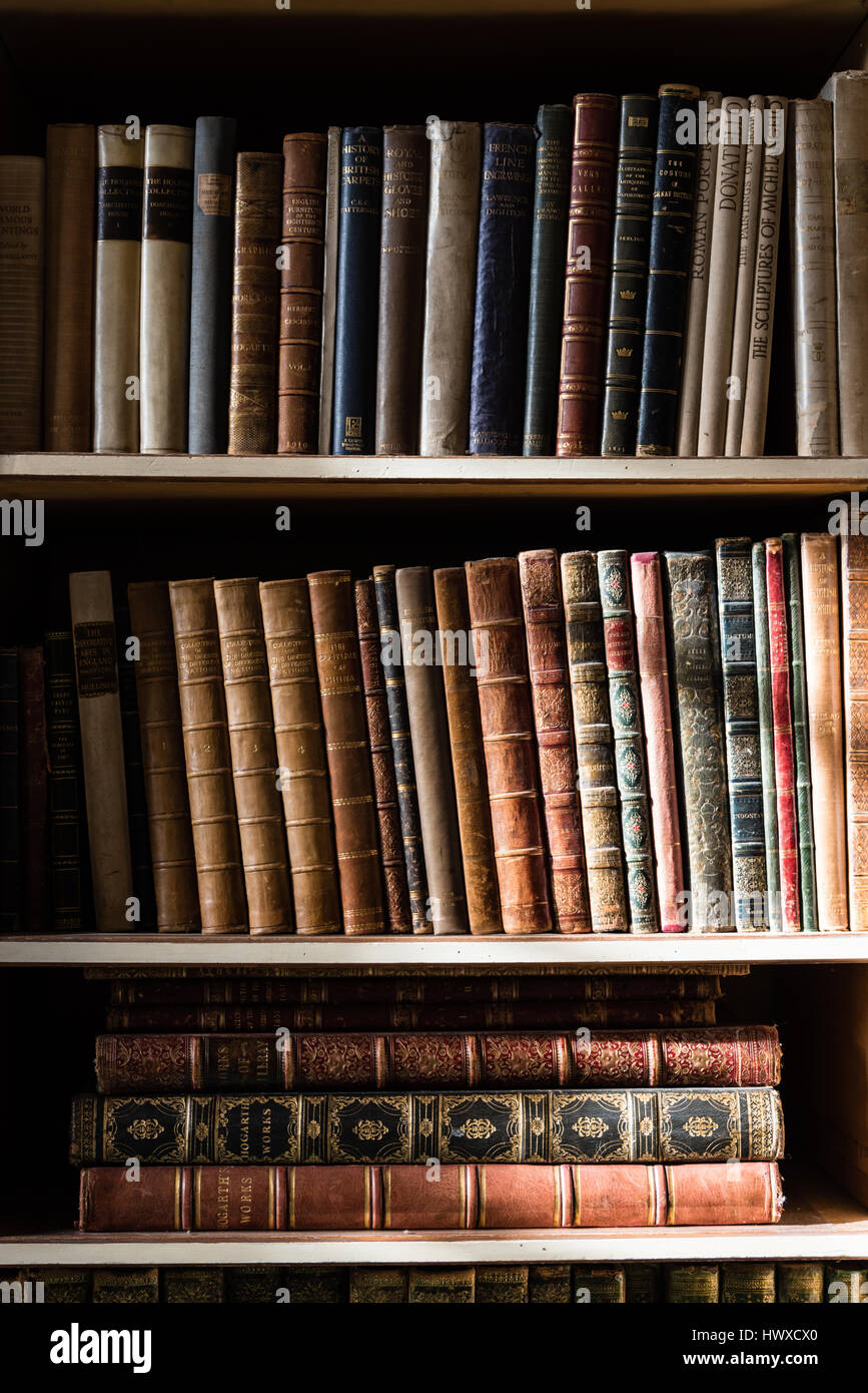 The Light Of The Window On Some Bookshelves Full Of Books Stock