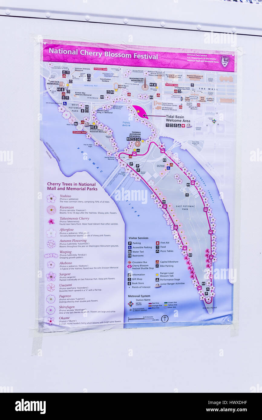 Washington Dc Usa March 17 2017 Cherry Blossom Map With