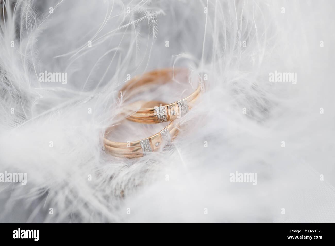 soft of free stock material mood image pink download wedding rings photo royalty