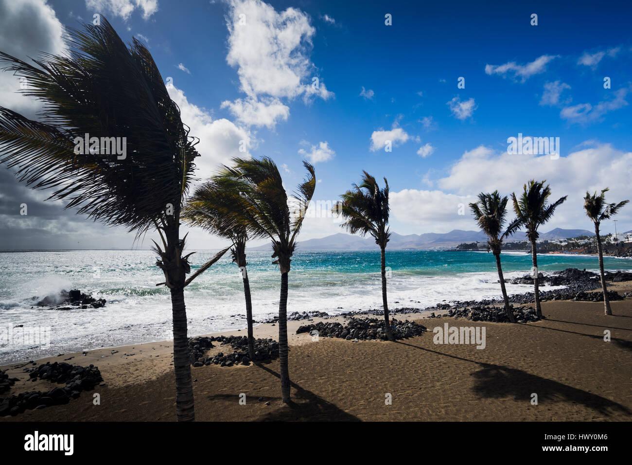 beach at Puerto del Carmen on Lanzarote - Stock Image