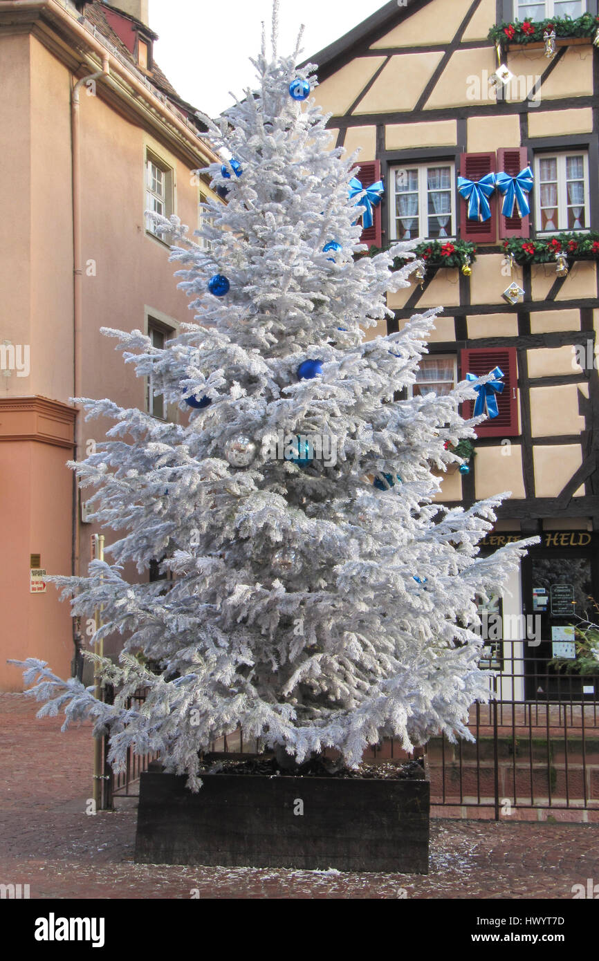Big White Christmas Tree In Front Of A Fachwerk House The Center Colmar Alsace