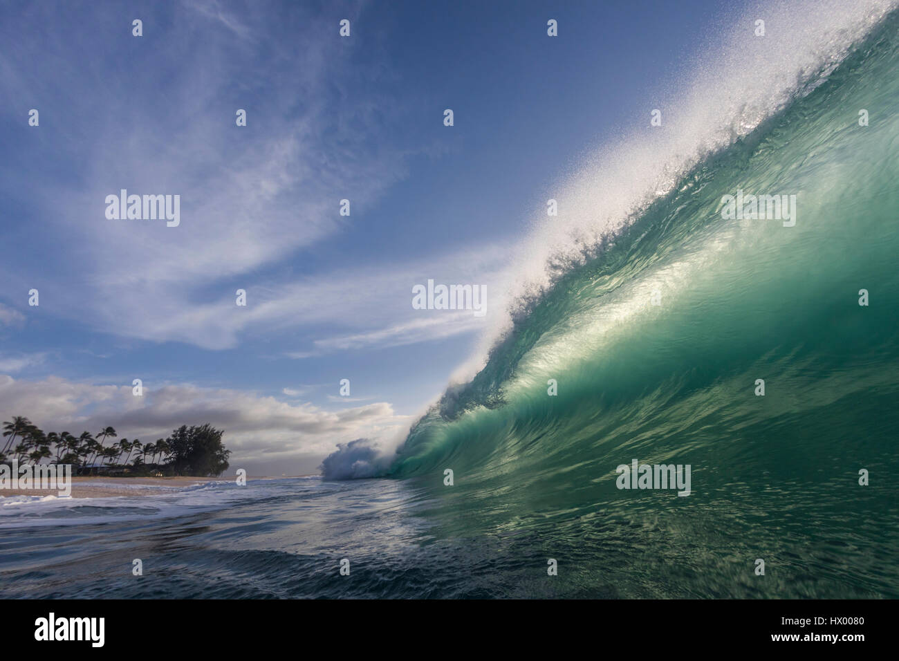 A shore break wave at Keiki beach on the North Shore of Oahu. - Stock Image