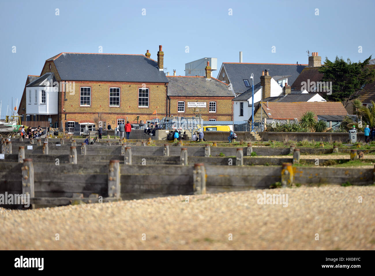 Whitstable Oyster Fishery company, Kent - Stock Image