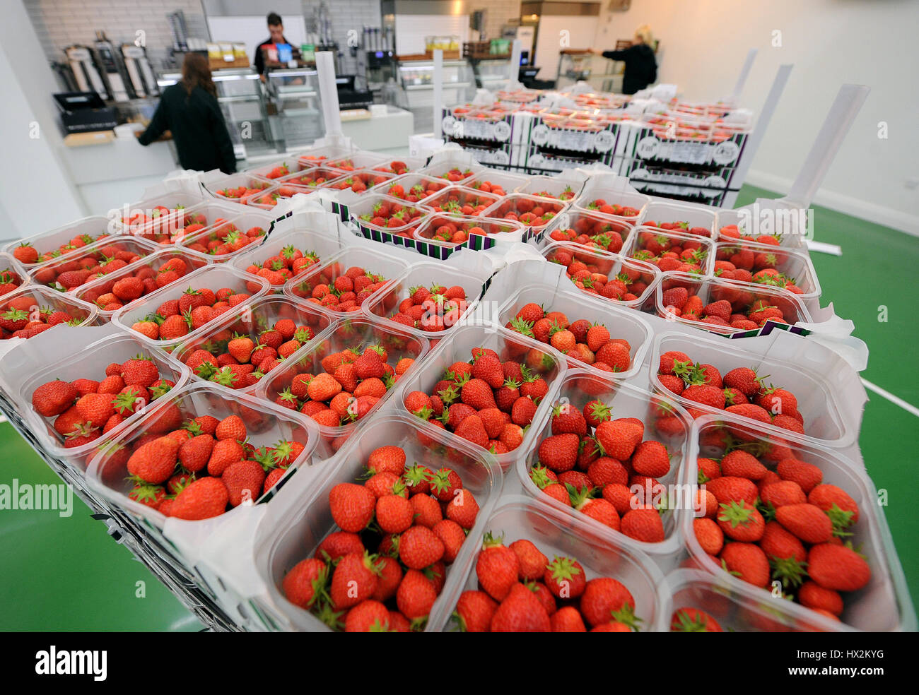 STRAWBERRIES GETTING DELIVERED THE WIMBLEDON THE WIMBLEDON CHAMPIONSHIPS 20 THE ALL ENGLAND TENNIS CLUB WIMBLEDON - Stock Image