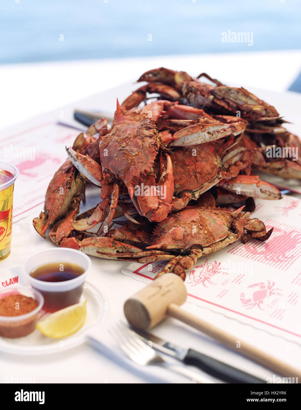 Maryland Blue Crabs at the Crab Claw Restaurant at the Inner Harbor of St. Michaels,Maryland, USA, - Stock Image