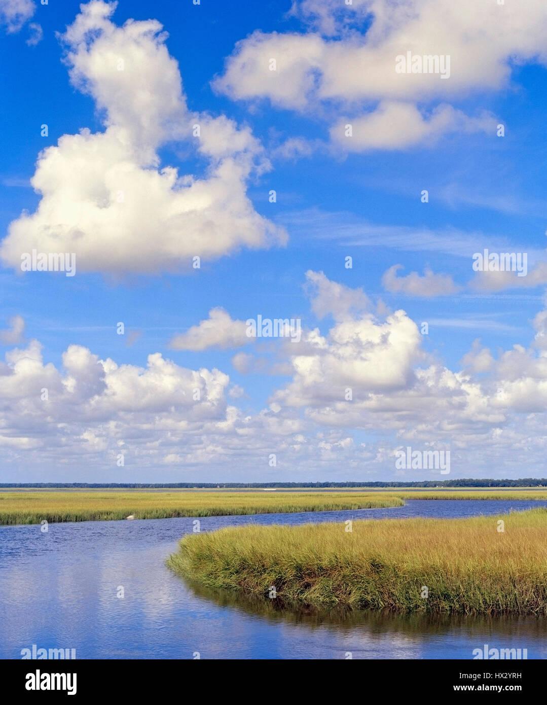 Walker Creek , Amelia Island , Florida Stock Photo