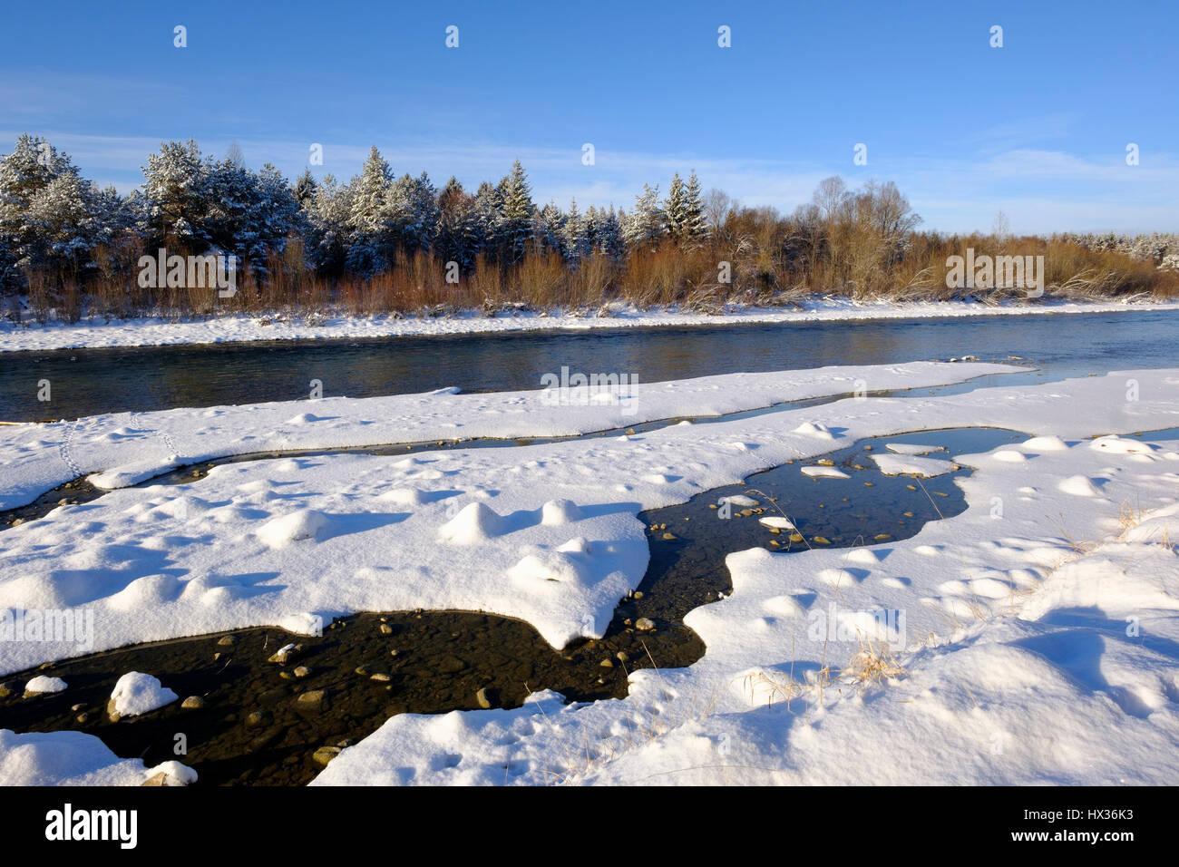 Isar in winter, snow on gravel bank, natural reserve Isarauen, Pupplinger Au, Upper Bavaria, Bavaria Germany Stock Photo