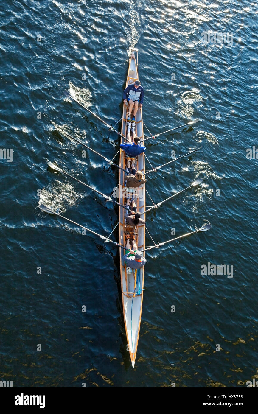Rowing, coxed four on the Ruhr, supervision, in Hattingen, Ruhr district, North Rhine-Westphalia, Germany - Stock Image