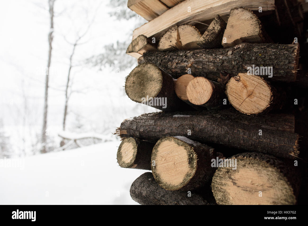 Firewood stacked under a deck during winter in Northern Ontario, Canada. - Stock Image