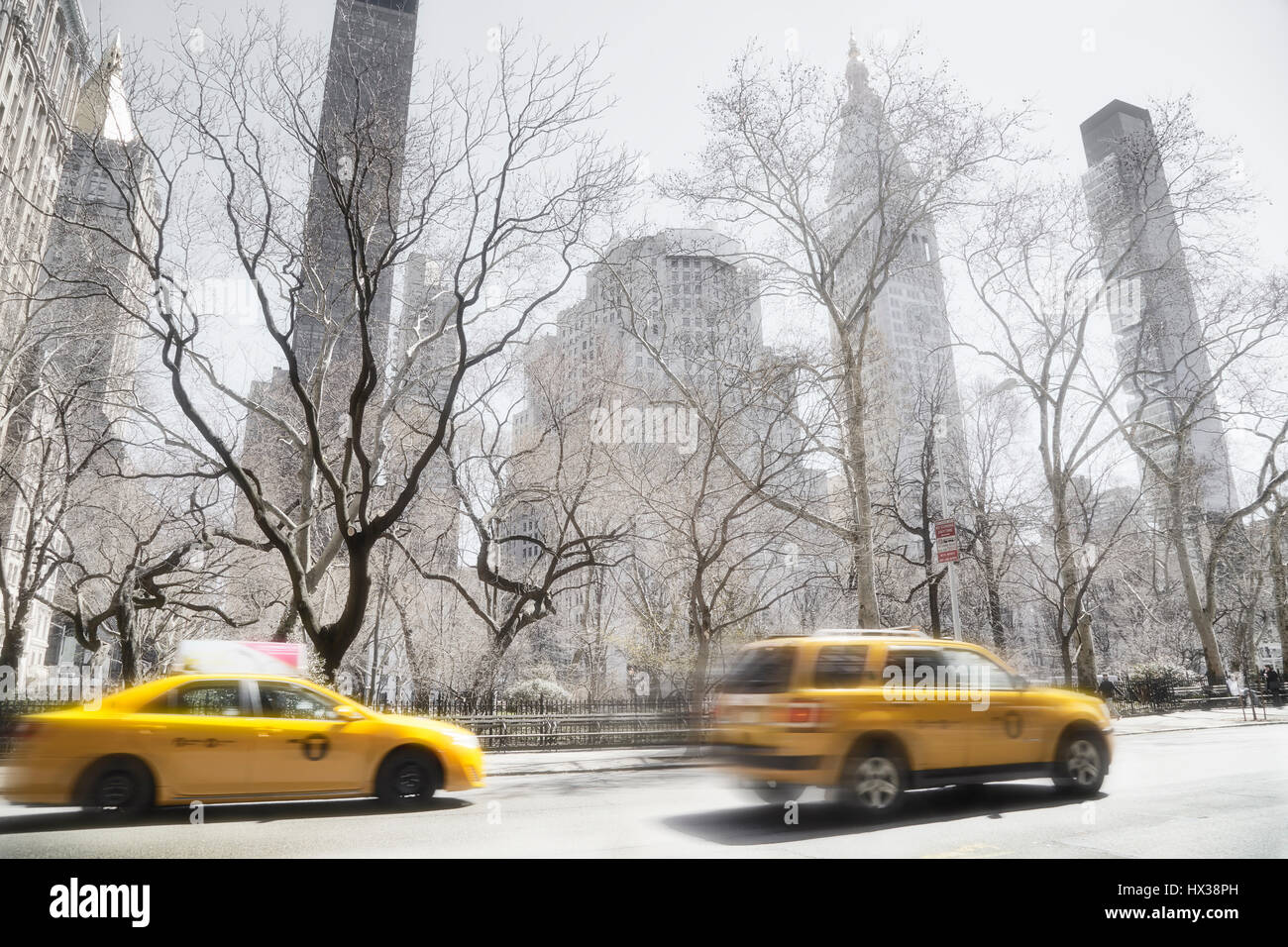 Taxi cabs driving in New York in front of a park - Stock Image