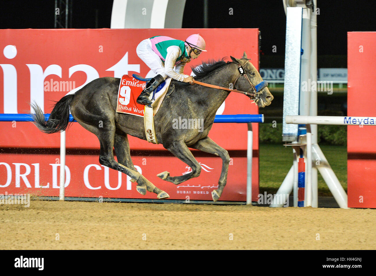 DUBAI, UAE, 25th March 2017. Arrogate, ridden by jockey Mike Smith wins the Dubai World Cup 2017 race. Trained in Stock Photo